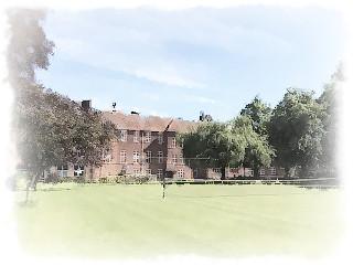 Языковой лагерь в Кембридже